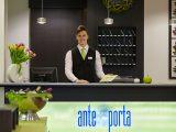 Ante-Porta-10a
